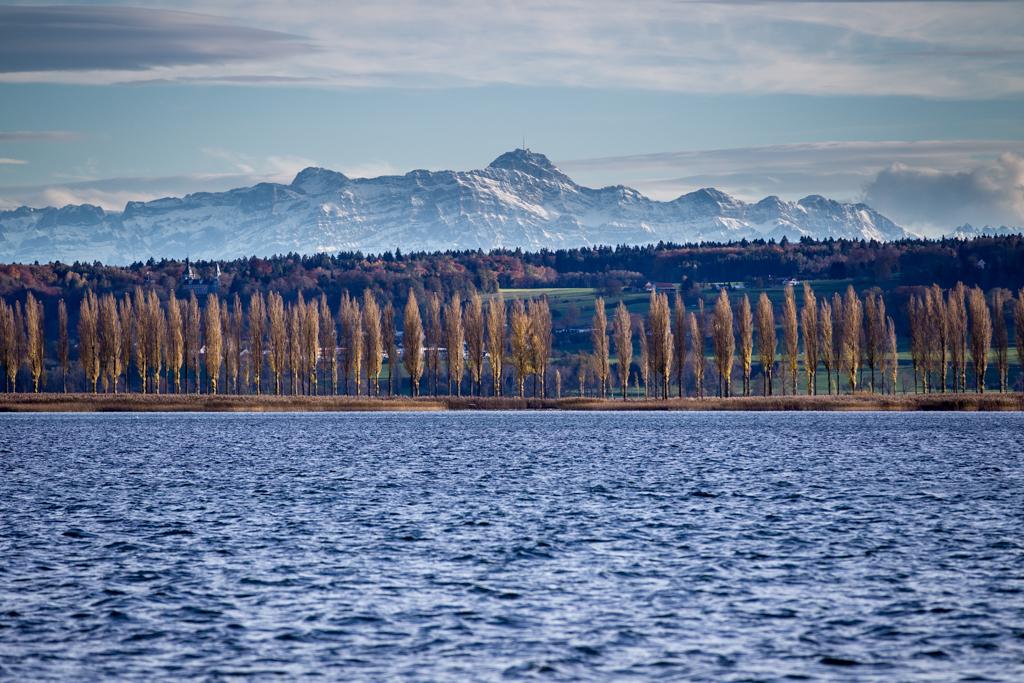 bodensee, reichenau, untersee, insel, bilder, fotos, lake constance, Säntis, Damm, Hochwarth, Schweiz